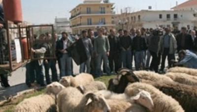Ξανά στους δρόμους οι κτηνοτρόφοι