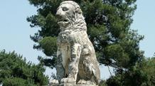 Το λιοντάρι στην Αμφίπολη μαρτυρά το φύλο του νεκρού