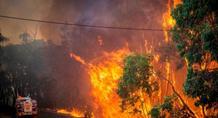 Φωτιά ξέσπασε στη Σάμο