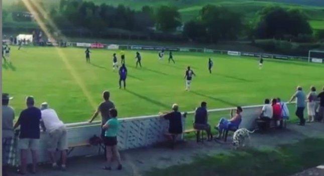 Δεν είναι ποδοσφαιριστής, είναι ΠΡΑΓΜΑΤΙΚΟ σκυλί! (video)
