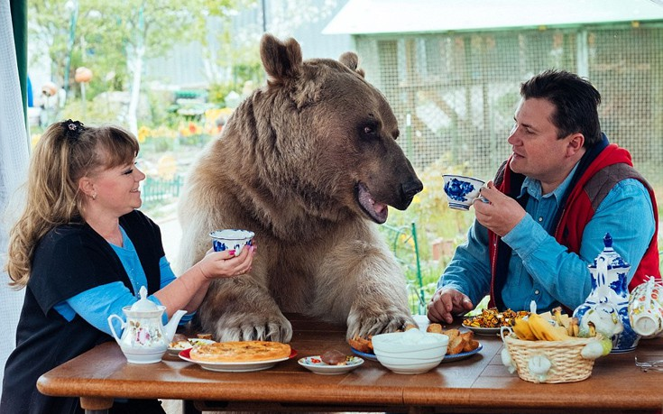 Ζευγάρι Ρώσων ζει εδώ και 23 χρόνια με μια αρκούδα