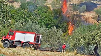 Πυρκαγιά στις Γούρνες Ηρακλείου