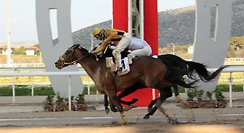 Θα δούμε «μάχη για την νίκη» στην 5η ιπποδρομία το Σάββατο στο Μαρκόπουλο;