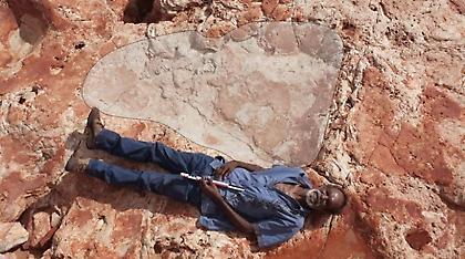 Σημαντική ανακάλυψη: Το μεγαλύτερο αποτύπωμα δεινοσαύρου στον πλανήτη (pics)