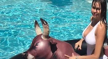 Η «καυτή» τούμπα της Σοφία Βεργκάρα στην πισίνα (pic/video)
