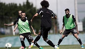 Ετοιμάζει για «τελικό» τους παίκτες του στο ΟΑΚΑ ο Ίβιτς