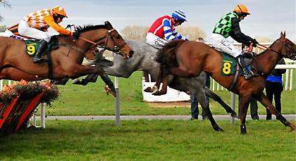Εξαιρετικό το φεστιβάλ ιπποδρομιών με εμπόδια σήμερα στην AUTEUIL της Γαλλίας!