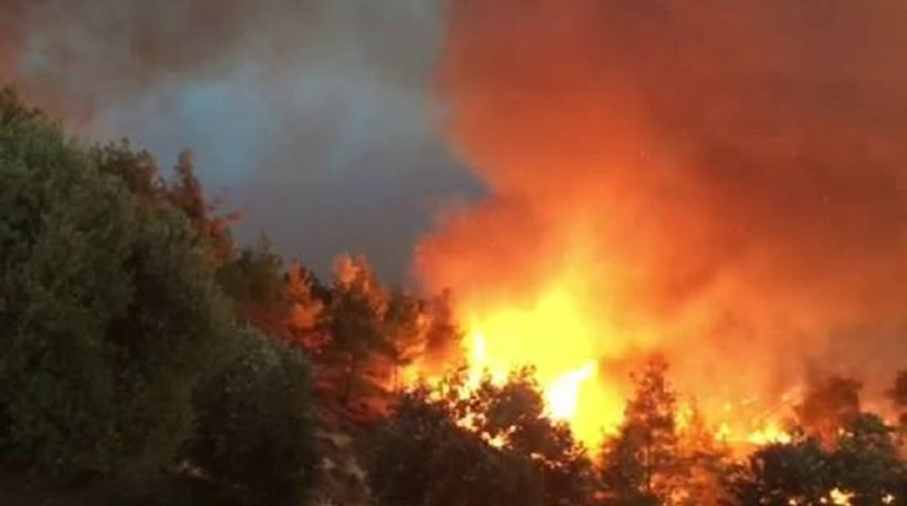 Πορτογαλία: Νέες δασικές πυρκαγιές μαίνονται στο βόρειο και στο κεντρικό τμήμα της χώρας