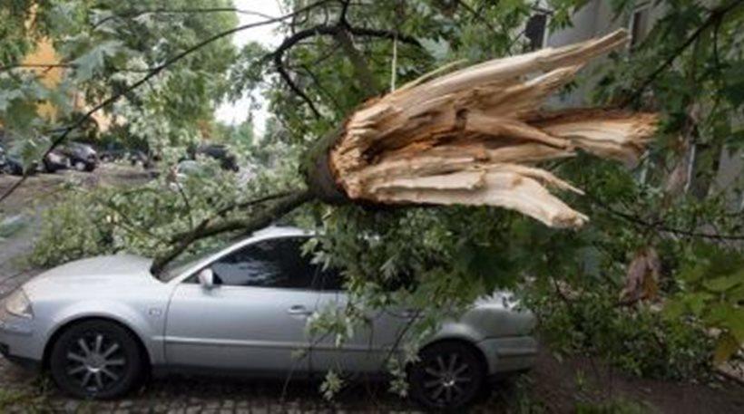 Πολωνία: Τέσσερις νεκροί, μεταξύ τους και δύο παιδιά, εξαιτίας σφοδρών καταιγίδων