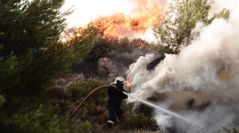 Πύρινη κόλαση στον Κάλαμο: Καθυστέρησαν πολύ τα εναέρια μέσα - Κάηκαν σπίτια