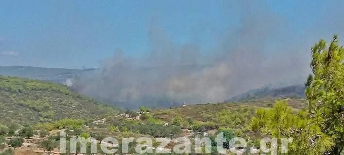 Νέα πυρκαγιά σε δάσος στο Καλαμάκι της Ζακύνθου -Δέκα ενεργά μέτωπα φωτιάς στο νησί