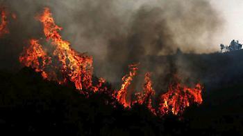 Σε ύφεση η πυρκαγιά στην περιοχή της Μάκρης του Δήμου Αλεξανδρούπολης
