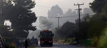 Κασσάνδρα: Υπό μερικό έλεγχο η φωτιά -Εκαψε περίπου 1.000 στρέμματα
