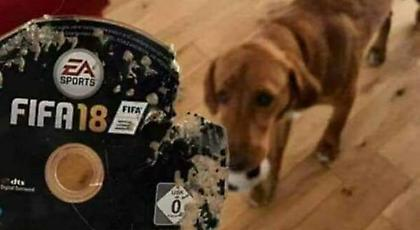 Πώς θα αντιδρούσατε αν ο σκύλος σας έκανε αυτό στο FIFA 18; (pic)