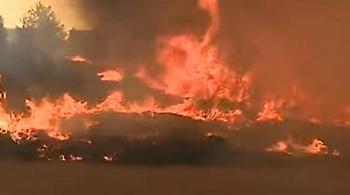Ανυπολόγιστη η καταστροφή στην Πορτογαλία: Τουλάχιστον 39 οι νεκροί από τις φωτιές