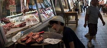 Ψάρια, κρέας αλλά και ψωμί έκοψαν οι Ελληνες στα χρόνια της κρίσης -«Ψαλίδι»18,6% στα τρόφιμα