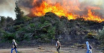Μάχη με τις φλόγες και ισχυρούς ανέμους στην Άνδρο