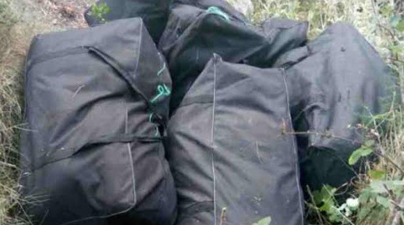 Κρήτη: Είχαν στα χέρια τους τον καλλιεργητή 333 χασισόδεντρων και δεν το ήξεραν