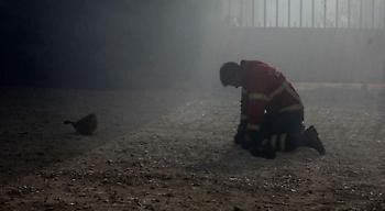 Ανεβαίνει ο αριθμός των νεκρών από πυρκαγιές στην Πορτογαλία