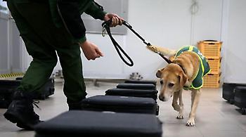 Και... εκπαιδευμένοι σκύλοι στην «ένταση» Αυστρίας-Τουρκίας