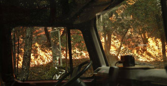 5.000 πυροσβέστες στη μάχη με τις φλόγες στην Καλιφόρνια