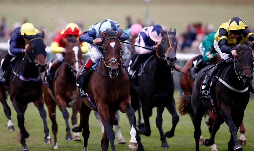 Η ιπποδρομιακή αγορά δείχνει πως στο πρόγραμμα της Αγγλίας δεν υπάρχουν μεγάλα φαβορί