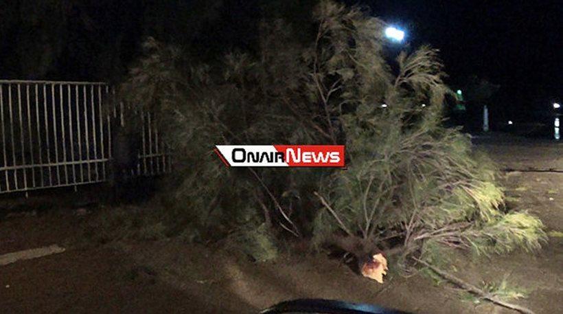 Η κακοκαιρία «χτυπά» την επαρχία: Εγκλωβίστηκαν οδηγοί στην Πάτρα, ξεριζώθηκαν δέντρα στο Μεσολόγγι
