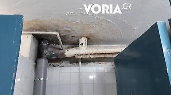Σε άθλια κατάσταση οι εστίες στο ΑΠΘ: Χωρίς ζεστό νερό και μούχλα παντού