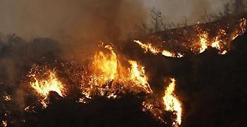 Κίνα: Πέντε νεκροί από φωτιά στο νότιο Πεκίνο