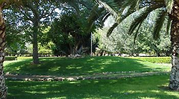 Πάρκο αναψυχής 46 στρεμμάτων στον Ελαιώνα ετοιμάζει ο δήμος Αθηναίων