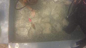 Υποθαλάσσια ανασκαφή: Τα περίπλοκα κτίρια στο βυθό της Αργολίδας