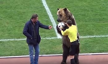 Μια πραγματική αρκούδα οργάνωσε εξέδρα σε ματς στη Ρωσία! (video)