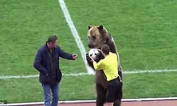 «Κράξιμο» σε ρωσική ποδοσφαιρική ομοσπονδία για την παρουσία της αρκούδας στο γήπεδο