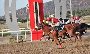 Περισσότερα από 60.000 ευρώ στο ΤΖΑΚΠΟΤ του ΣΚΟΡ 6 στις Ελληνικές ιπποδρομίες σήμερα Σάββατο!