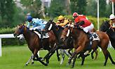 Πολλά άλογα παίζονται σήμερα για την πρώτη θέση και αυτό δυσκολεύει τα προγνωστικά!