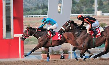 Το ράλλυ Ακρόπολις και οι Ελληνικές ιπποδρομίες έχουν σήμερα Παρασκευή ραντεβού στο Μαρκόπουλο!