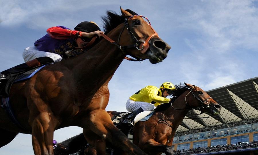 Hμέρα του αουτσάιντερ αναμένεται να είναι η σημερινή στις ιπποδρομίες!