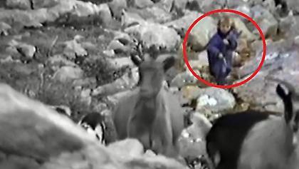 Ο πεντάχρονος Μόντριτς σε ντοκιμαντέρ για λύκους το 1990 (video)