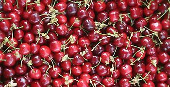 Δέσμευση 1.394 κιλών φρούτων σε επιχείρηση του Πειραιά