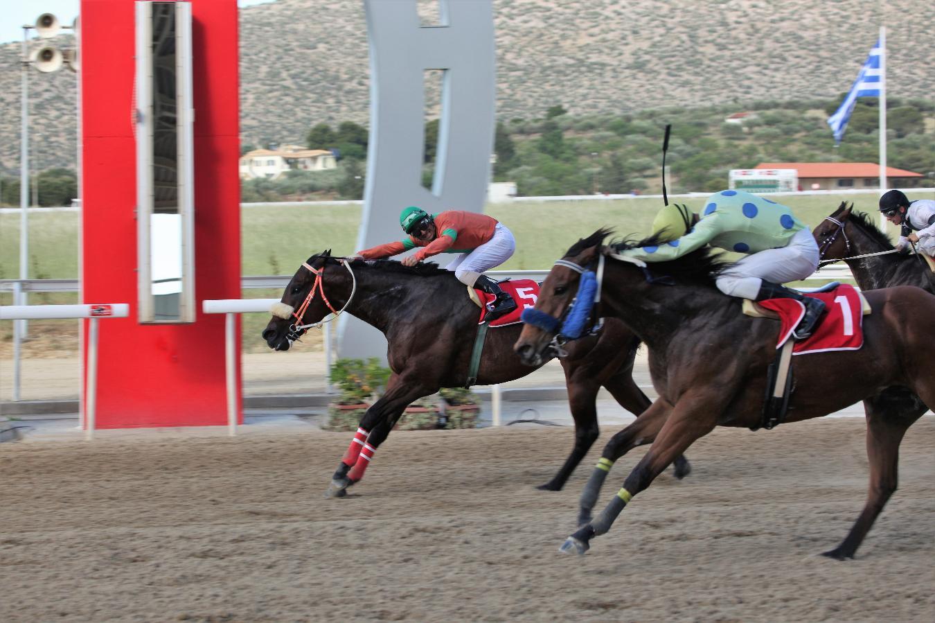 Ο ίππος ΜΑΝΟΥΣΟΣ «το χρυσό άλογο» της χρονιάς και…παντού τζακ-ποτ!