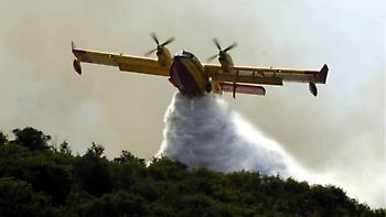 Μεγάλη πυρκαγιά σε δάσος στη Σκόπελο
