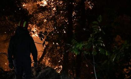Σε ύφεση η φωτιά στην Εύβοια - Προσπαθούν να τη θέσουν υπό έλεγχο