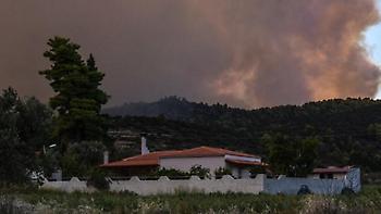 Σε ύφεση η πυρκαγιά στο δήμο Δίρφης-Μεσσαπίων στην Εύβοια