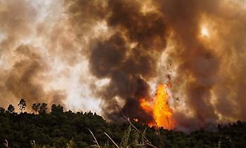 Διπλό πύρινο μέτωπο στην Αμαλιάδα: Νέα εστία φωτιάς ανάμεσα σε Γεράκι και Ανάληψη