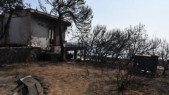 Φωτιά στο Μάτι: Δεκάδες παραλείψεις και λάθη δείχνει το πόρισμα του πραγματογνώμονα των θυμάτων