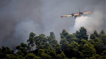 Συνελήφθησαν δύο Έλληνες ύποπτοι για τις φωτιές στην Αμαλιάδα