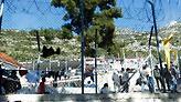 Δήμαρχος Σάμου: Το νησί δεν μπορεί να αντέξει άλλα βάρη με τους μετανάστες