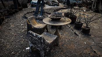 Καταγγελία για απόκρυψη στοιχείων από τη φωτιά στο Μάτι