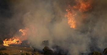 Κομισιόν: Πάνω από 16 εκατομ. στρέμματα έχουν κάψει οι πυρκαγιές στην Ελλάδα