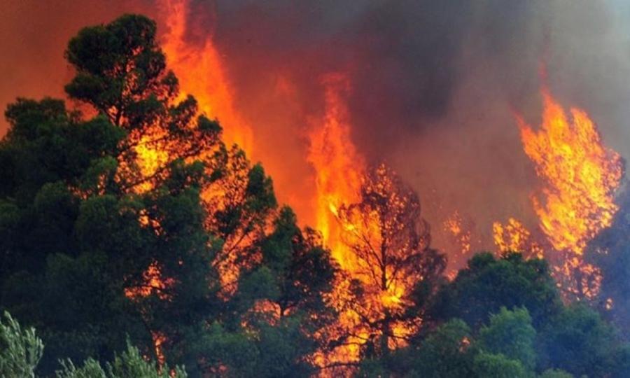 Μεγάλη φωτιά στην περιοχή Ρεβελέικα, στον δήμο Ζαχάρως